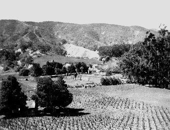 Main Ranch in the days of Justinian Caire